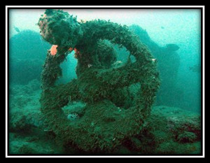 A chariot wheel in the Red Sea